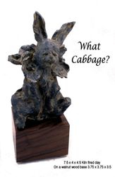What Cabbage?