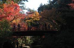 Itsukushima, Miyajima, Hiroshima, Japan