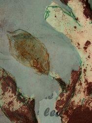 Dead Leaf I Detail