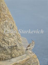 "Rock Wren Above the South Saskatchewan (16 by 12"" acrylic on masonite)"