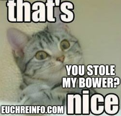 That's nice. You stole my bower?