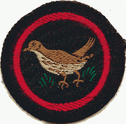 Thrush Patrol Badge