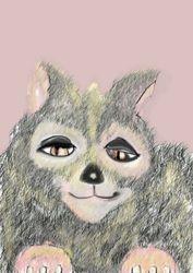 Grey cat 2