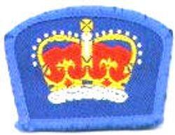 Queen's Guide Award