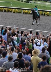 Zenyatta Works the Crowd
