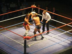 Johnny Kidd arm lever Matt Striker