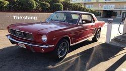 31.66 Mustang