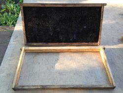 Removing all synthetic materials