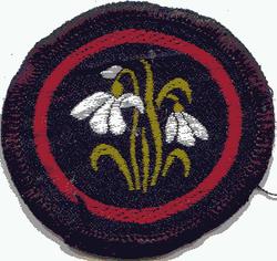 Snowdrop Patrol Badge