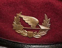 Team 51, 42nd ARVN/Ranger 1965-65: