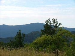 Monte Molinatico