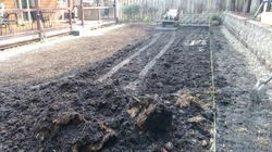 Organic soil removal