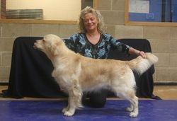 Graduate Dog First