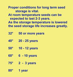 seed storage conditions