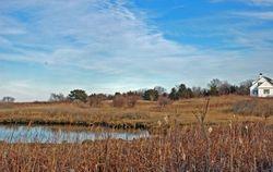 Walking at Sheriff's Meadow, Edgartown