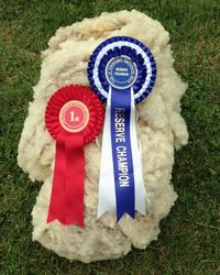 Reserve Champion Fleece
