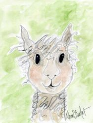 Al the Alpaca