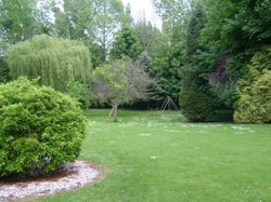 The formal lawn
