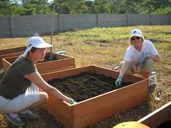 Square Foot Garden Boxes 2