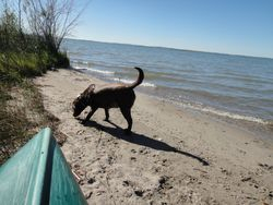 Maggie at the Lake Sept 6