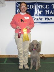 Amber winning third place in CDSP Novice and earning her second CD-C leg.  1/22/11.