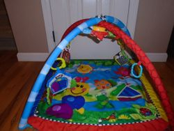 Baby Einstein Caterpillar and Friends Play Gym - $30