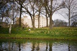 Daffodil Gardens & Nurses Home Christchurch