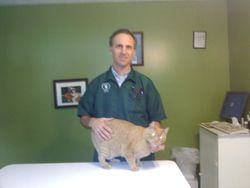 Dr. Barker & Our Wellborn Clinic Cat, Louie