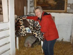 Susan showing off the pot bellied pigs at the Animal Reiki Workshop