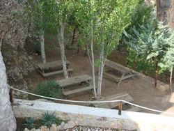 Seating and Picnic Area