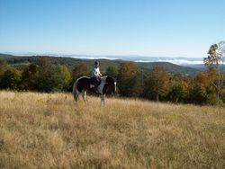 Fall Foliage Ride at GMHA
