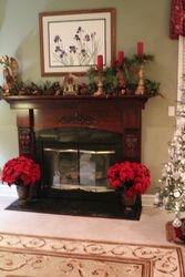 Mullica Hill Fireplace