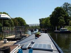 Flotilla of narrowboats!