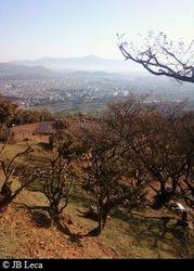 Top of Arashiyama Monkey Park