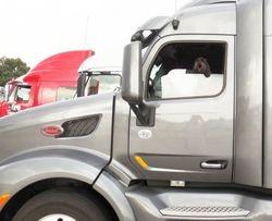 Trucker Pup