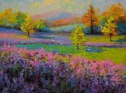 Lavender landscape.