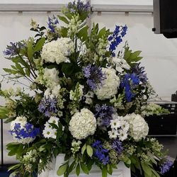 Blue Delphinium and Agapanthus