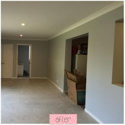 Jan 15 - extension paint after