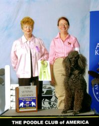 Flash winning Veterans third place at PCA National Specialty at age 14.  6/13/06.
