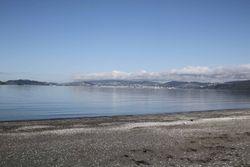 Windless in Wellington