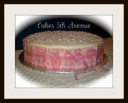 Pink Chocolate Panel cake