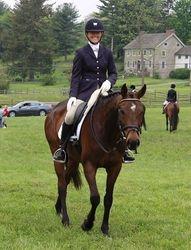 Plantation Field Horse Trials