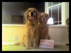 Happy Birthday, Miss Bailey!