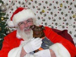 Santa and Taz