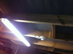 Garage light