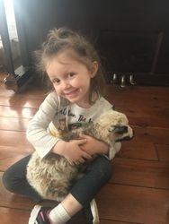 Lambs Need Cuddles Too