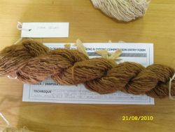CGoW Spinning & Dyeing Competition Aug 2010