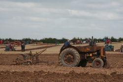 MM & tumble bug plough