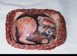 Pomeranian Dog Rock