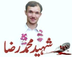 Shaheed Muhammad Reza